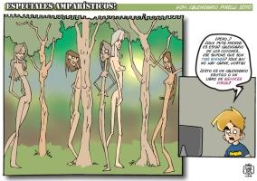 ESPECIALES AMPARÍSTICOS 03